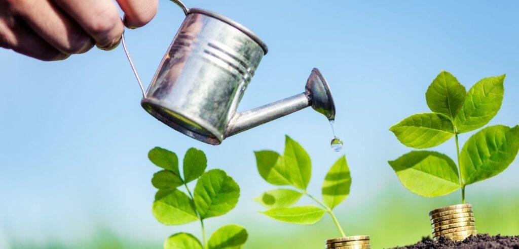 Business Growth Guida Accountancy